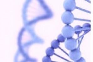 viroterapia oncolítica para el cáncer de próstata