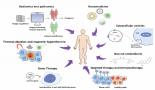 961-innovative-approaches-for-cancer-treatment-current-perspectives-and-new-challenges