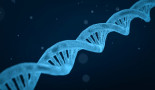 New signposts in DNA for cancer and disease risk uncovered
