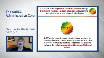 CaRE2 Cancer Research Link© : The CaRE2 Center Administrative Core ( Prof Diana Wilkie, Prof Kinfe Redda and Prof Mariana Stern )